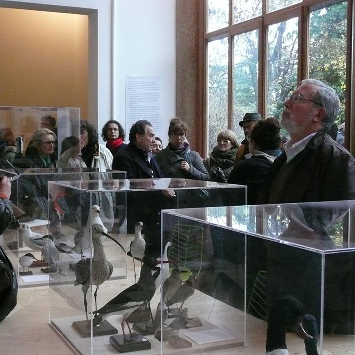 Lorenzo Bonometto
