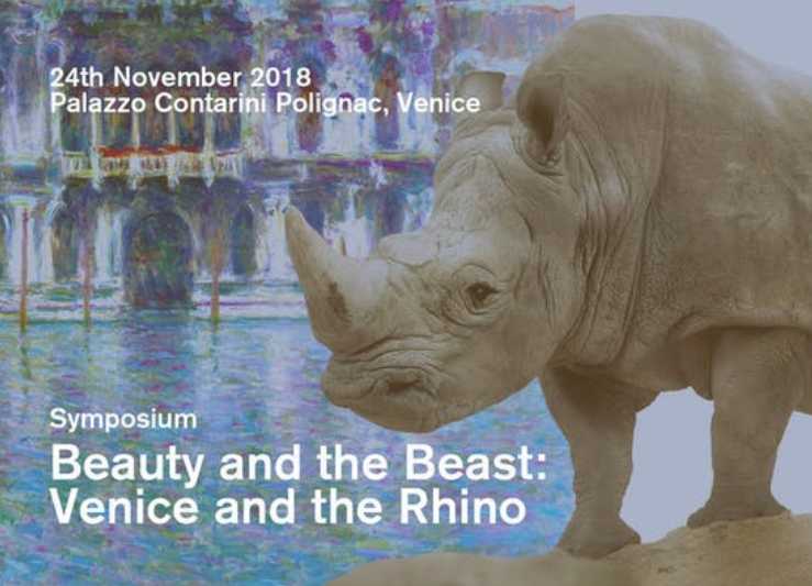 Venice And The Rhino, Palazzo Contarini Polignac
